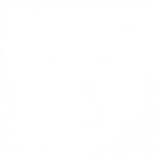 Bear logo white